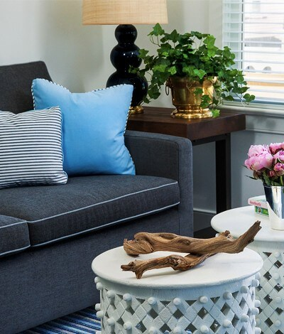 gray couch with pillows and two small accent tables with plants
